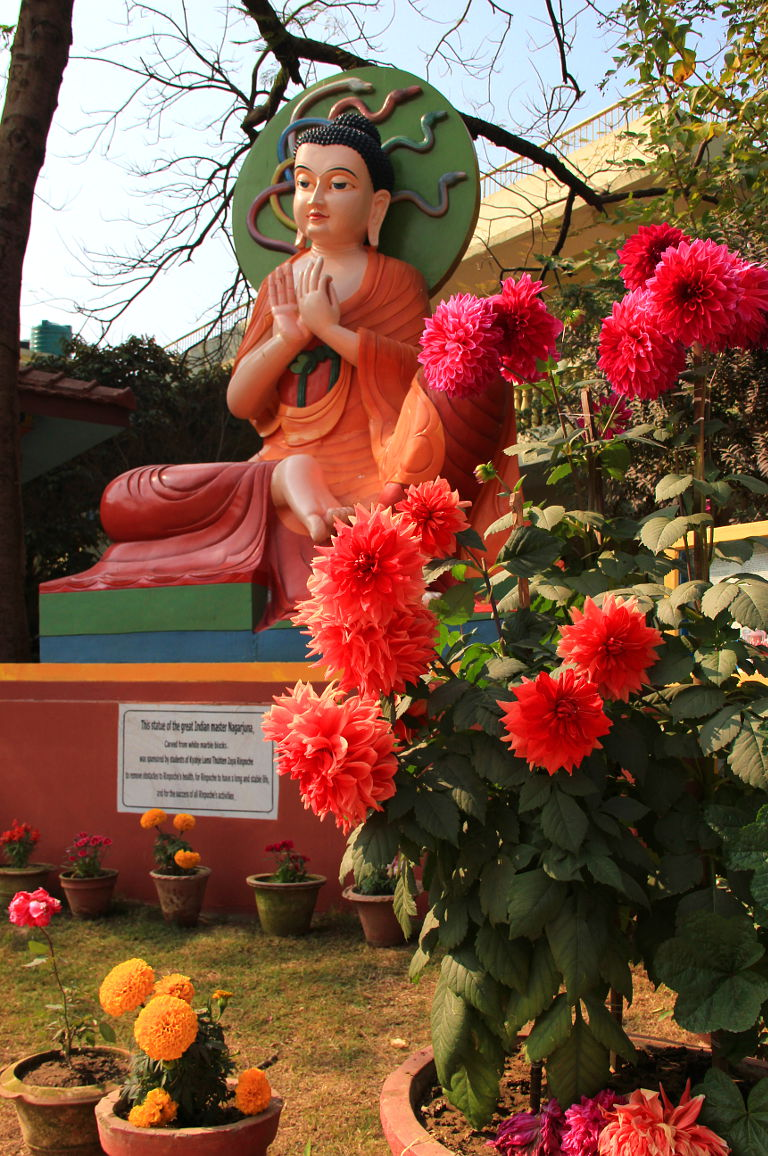 Nagarjuna – propounder of Lord Buddha's perfection of wisdom teachings